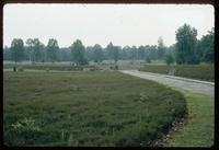 Bergen-Belsen Concentration Camp : View back to camp entry