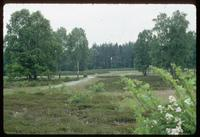 Bergen-Belsen Concentration Camp : View of past barracks locations