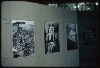 Bergen-Belsen Concentration Camp : Exhibition boards