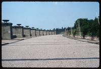 Buchenwald Concentration Camp : Broader view of landscape and stelae