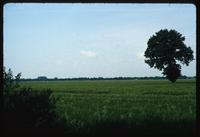 Neuengamme Concentration Camp : Off-site rural landscape