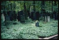Weissensee Cemetery (Berlin, Germany) : Additional grave stones