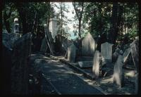 Pinkas Synagogue (Prague, Czech Republic) : Walk within the cemetery showing disheveled stones