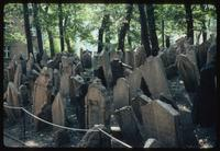 Pinkas Synagogue (Prague, Czech Republic) : Cemetery at the Synagogue