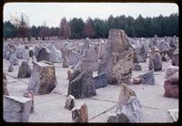 Treblinka Concentration Camp : Field of commemorative stones representing Polish cities