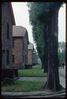 Auschwitz Concentration Camp : Barracks row with main gate to the right