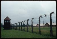 Birkenau Concentration Camp : Camp B1 electrified fence and guard tower