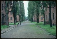 Auschwitz Concentration Camp : Barracks road spine at Auschwitz Camp 1