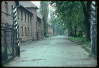 Auschwitz Concentration Camp : View from the main entry gate into the barracks (blocks) rows