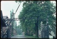 Auschwitz Concentration Camp : View through the main entry gate at Auschwitz 1
