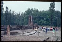 Birkenau Concentration Camp : View of Auschwitz-Birkenau Memorial in 1979