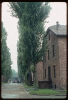 Auschwitz Concentration Camp : Barracks row with main gate to the left