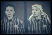 Auschwitz Concentration Camp : Nazi photo of newly admitted girl inmate