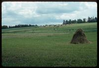Sobibór Concentration Camp : Farm fields near Sobibor