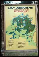 Sobibór Concentration Camp : Camp regional location map