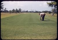 A large tee looking towards a green at the Indian Creek Country Club, Florida, 1953, with O. J. Noer viewing the puffy Tifton 57 surface
