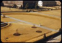 View of dormant bermudagrass campus turf at Oklahoma A&M, Stillwater, outside the Student Center in 1954, with a lone person walking on a sidewalk through the golden tan sward