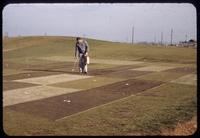 Jack Kolb applying an experimental snowmold control on the research plots, Toro Research Center, Toro Headquarters, Minnesota, 1953