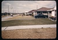 Suburban front yards in Houston looking mid-yard along the street, with fertilized and unfertilized St. Augustinegrass lawns, and concrete driveways transecting, 1952